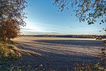 morgentliche-Landschaft