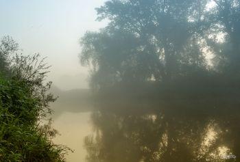 Herbst_08