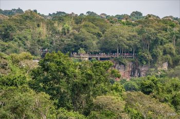 Nationalpark_Iguacu_Brasilien_05