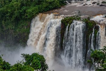 Nationalpark_Iguacu_Brasilien_24